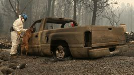 63 Dead, 631 Unaccounted for in Northern Calif. Wildfire
