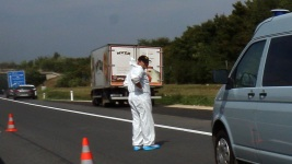 Truck 'Full of Bodies' Found in Austria: Official