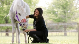Ex-Owner: No Paint-Balling of Horse Adopted by Stewart