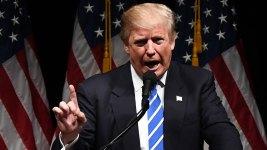 Democratic Strategist Refutes Trump's Claims of Paid Protests