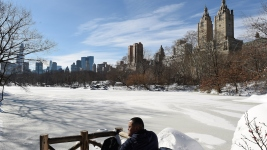 NYC Officials Decide It's Too Cold for Ice Festival