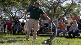 Snake Hunters Prepare for Python-Killing Challenge