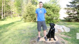 How a Dog Named Liberty Helped a Veteran in Pain