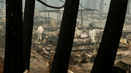 Death Toll at 48 in N. Calif. Wildfire, Deadliest in State's History