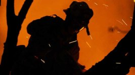 Firefighter Dies While Battling California Wildfire: Officials