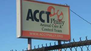 NBC10 Investigators: New Report Accuses Philly Animal Shelter of Wasteful Spending, Loose Financial Control