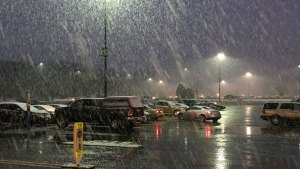 Snow and Wintry Mix Fall Throughout Area