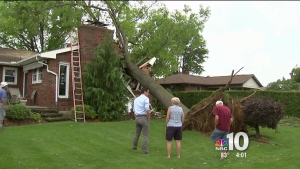 Volunteers Help Clean Up Storm Damage in Lehigh County