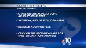 Clear the Shelters: Help Pets Find Homes