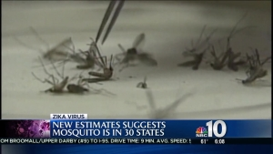 Zika Concerns Spreading Across US
