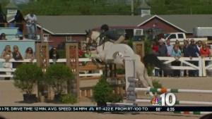 Devon Horse Show Begins
