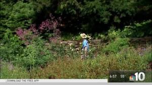 Pokemon Go Day at Morris Arboretum