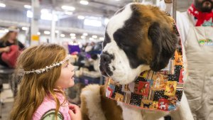 2016 National Dog Show: Get Your Tickets!