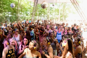Firefly Music Festival First-Ever Sell Out