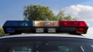 Georgia Police Called on Black Man Babysitting White Kids