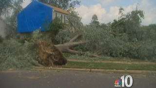 [PHI] Storm Damage In Voorhees, New Jersey