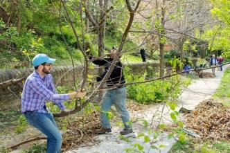 Mifflin Arboretum Gets a Makeover