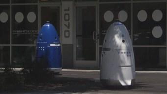 Security Robot Injures Boy at Calif. Shopping Center