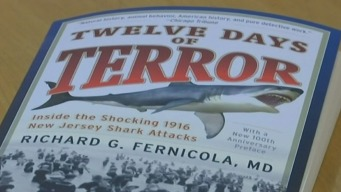 100th Anniversary Since Fatal Shark Attack at Jersey Shore
