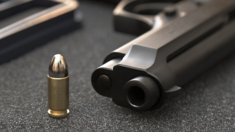Quick Release of Gun Data Called Trailblazing and Troubling