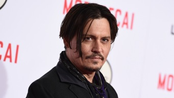 Depp Could Face Jail Time for Bringing Dogs Into Australia