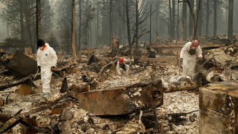NorCal Wildfire Death Toll Now at 48; Many Still Missing