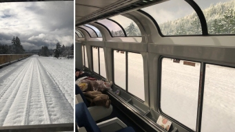 Passengers Stranded for 2 Nights on Amtrak That Hit Tree