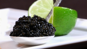 Caviar, Gold and More Indulgent Dining at Brasserie Pushkin