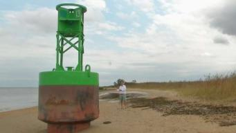 Marooned Buoy Bringing Attention to Delaware Beach