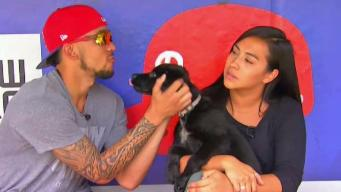 Phillies' JP Crawford Helps Clear the Shelters