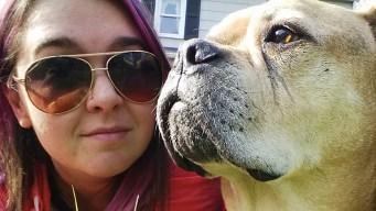 Woman Creates Bucket List for Terminally Ill Dog
