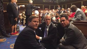 Local Democrats Take Part in Gun Control Sit-In