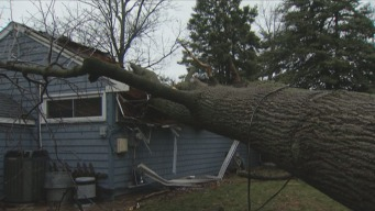 Flooding, Storm Damage, Outages Across Area