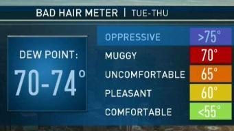 Bad Hair Week Ahead