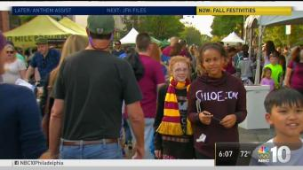 Harry Potter Festival in Chestnut Hill
