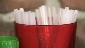 Atlantic County Bans Plastic Bags And Straws