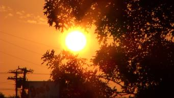 Excessive Heat, Air Quality Alerts as Temps Feel Like 100