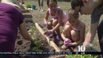 Camden Urban Garden Opens to Feed Families in Need