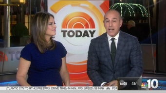 Matt Lauer Remembers Sheela Allen-Stephens