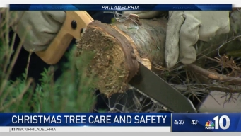 Deputy Fire Commissioner's Lesson on Christmas Tree Safety