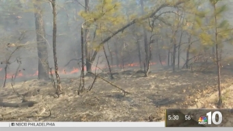 Growing Concerns About NJ Wildfires