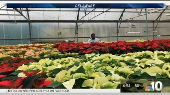 New Delaware Hiring Program Expanding Career Paths