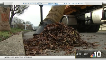 Push on to Clean Up Fall Leaves