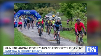 Cycling to Rescue Animals in Need