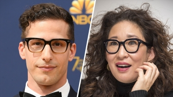 Sandra Oh, Andy Samberg to Co-Host 2019 Golden Globes