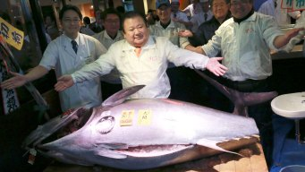 Bluefin Tuna Goes for $632,000 in 1st Tsukiji Auction of '17