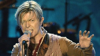 David Bowie's Hair Could Grab $4,000-Plus at Auction
