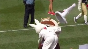 Easter Bunny Savagely Destroys Teddy Roosevelt at Phils Game