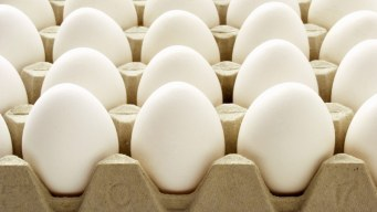 Cage-Free Eggs Cost College Students
