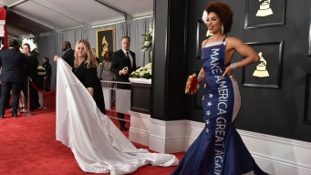 Singer Turns Heads With Trump Gown at Grammys